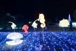 天理市光の祭典2020