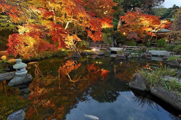 長谷寺(神奈川県鎌倉市)