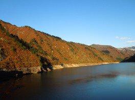 大谷ダムの紅葉