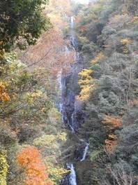 常清滝の紅葉