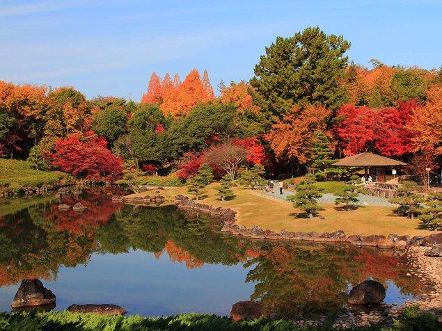 愛知県緑化センターの紅葉
