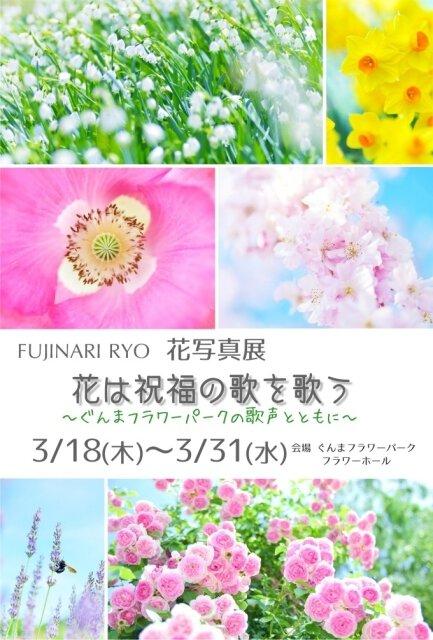 花写真展「花は祝福の歌を歌う」