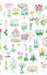 藤川志朗 バラと花のイラスト展 2018春