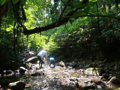 夏が来た! 森のスタッフと沢探検