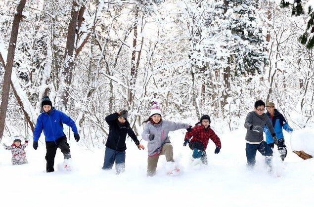 雪の森の散歩
