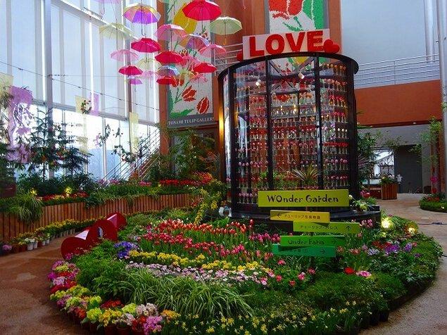 チューリップ四季彩館常設展「季節を彩る花々~春~」