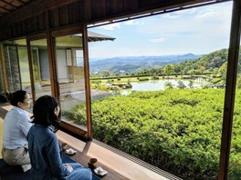 日本庭園 東林苑 お茶室開放