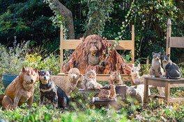 会場ではミニやくも号に乗車した《木彫のムーコ》が来館者を案内してくれる