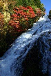 【紅葉・見ごろ】湯滝