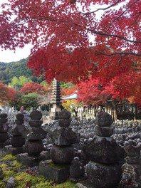 あだし野念仏寺の紅葉
