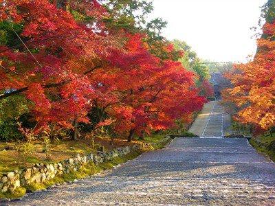小倉山二尊院の紅葉