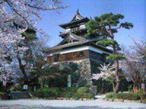 【桜・見ごろ】丸岡城、霞ヶ城公園