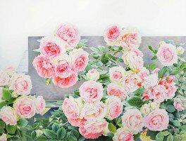 渡辺三絵子「ぬり絵から始めるバラの水彩画教室」