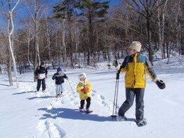 雪の上を歩く スノーシュー体験ツアー 軽井沢「冬の森スノー」