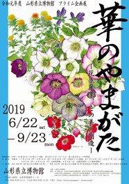 バラ、トルコギキョウ、アルストロメリア、ストック、リンドウ、啓翁桜なども県内各地で栽培。全国有数の生産量を誇っている