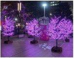 東京ILLUMILIA