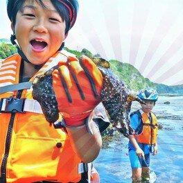 親子で6月の「三浦半島・生き物探しの海岸線歩き」