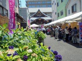 あじさい祭開運セールイベント 日本一のあじさい図鑑