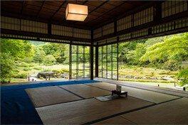 夏の早朝特別公開「夏・朝・縁側・煎茶・庭」