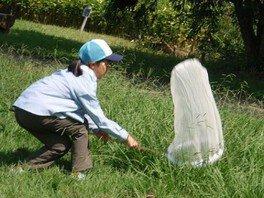 国営昭和記念公園 ネイチャープログラム~超チョウの調査団~<中止となりました>