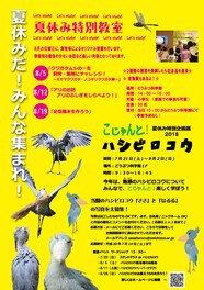 夏休み特別企画展「こじゃんと!ハシビロコウ」