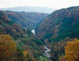 【紅葉・見ごろ】蘇陽峡