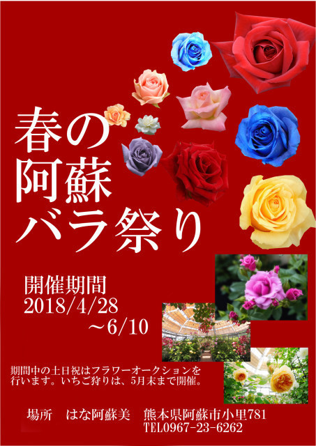 はな阿蘇美 春の阿蘇バラ祭り 2018