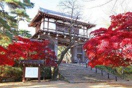 千秋公園の紅葉