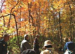 里山エコトレッキングツアー「感じよう・~落ち葉のささやき」