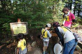 広島市森林公園 グリーンアドベンチャー