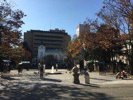 開港広場公園の紅葉