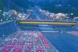 栃尾温泉桜ライトアップ