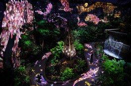 チームラボ 宇部市ときわ公園 2018 世界を旅する植物と、花と共に生きる動物たち