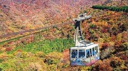 箱根 駒ケ岳ロープウェーの紅葉