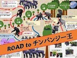 チンパンジーフェスティバル ROAD to チンパンジー王