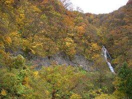 【紅葉・見ごろ】青沢渓谷