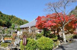 高蔵寺の紅葉
