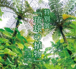 特別展 『琉球の植物』