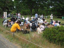国営昭和記念公園  チューリップ球根掘り取り体験「東北にチューリップを送ろう!」