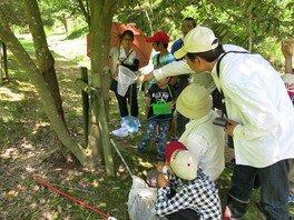 県立なか・やちよの森公園 昆虫観察会