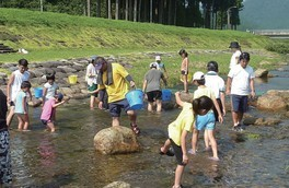 水辺の生き物調査