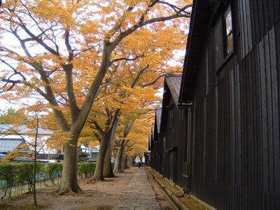 【紅葉・見ごろ】山居倉庫