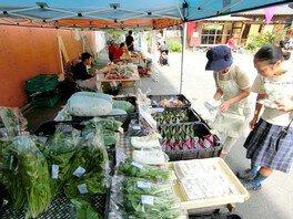 JUJO Green Market(9月)
