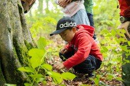 アリの視点で森を歩こう!苔ハイク&苔クラフト