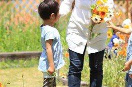 花摘み園(6月)