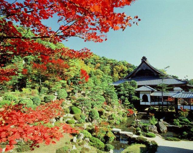 大原山・西福寺の紅葉