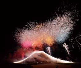 【2020年中止】エキサイティング花火2020 第45回 江戸川区花火大会