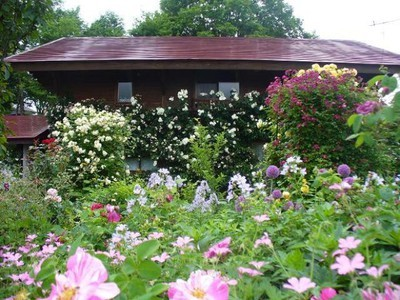 蔵王オープンガーデン~山の秋の庭~