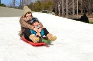 浜名湖ガーデンパーク Winter Festa2019「雪まつり」