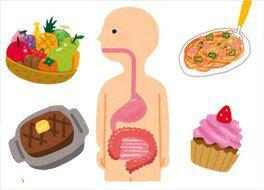 科学実験工房サイエンスショー「たんけん!人のからだ 食べたものはどうなるの!?」